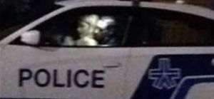 Canada : Un policier en service surpris en plein ébat sexuel