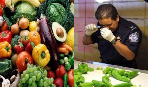 Haiti: Des fruits et légumes dominicains contaminés par la mouche méditerranéenne