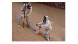 Haiti: Le gouvernement haitien interdit l'importation de la farine de blé dominicaine