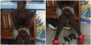 Haiti: Un autre suspect a été arrêté par la police
