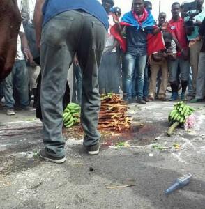 HAITI: Manifestation de l'opposition débute, ce matin, au Cap-Haitien, par une cérémonie de vodou