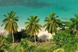 Haiti: Ile-à-Vache, la nouvelle Punta Cana des Caraïbes ?